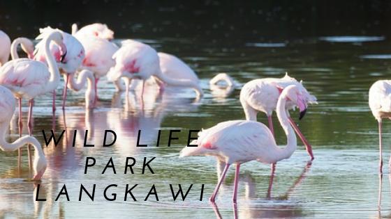 wildlife park langkawi